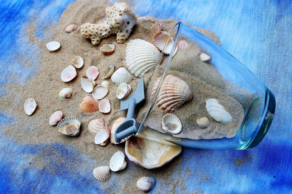 nature shells